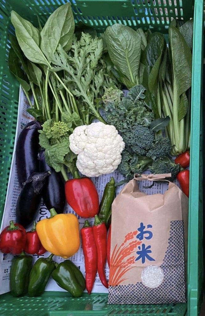 新鮮野菜を産直通販しています