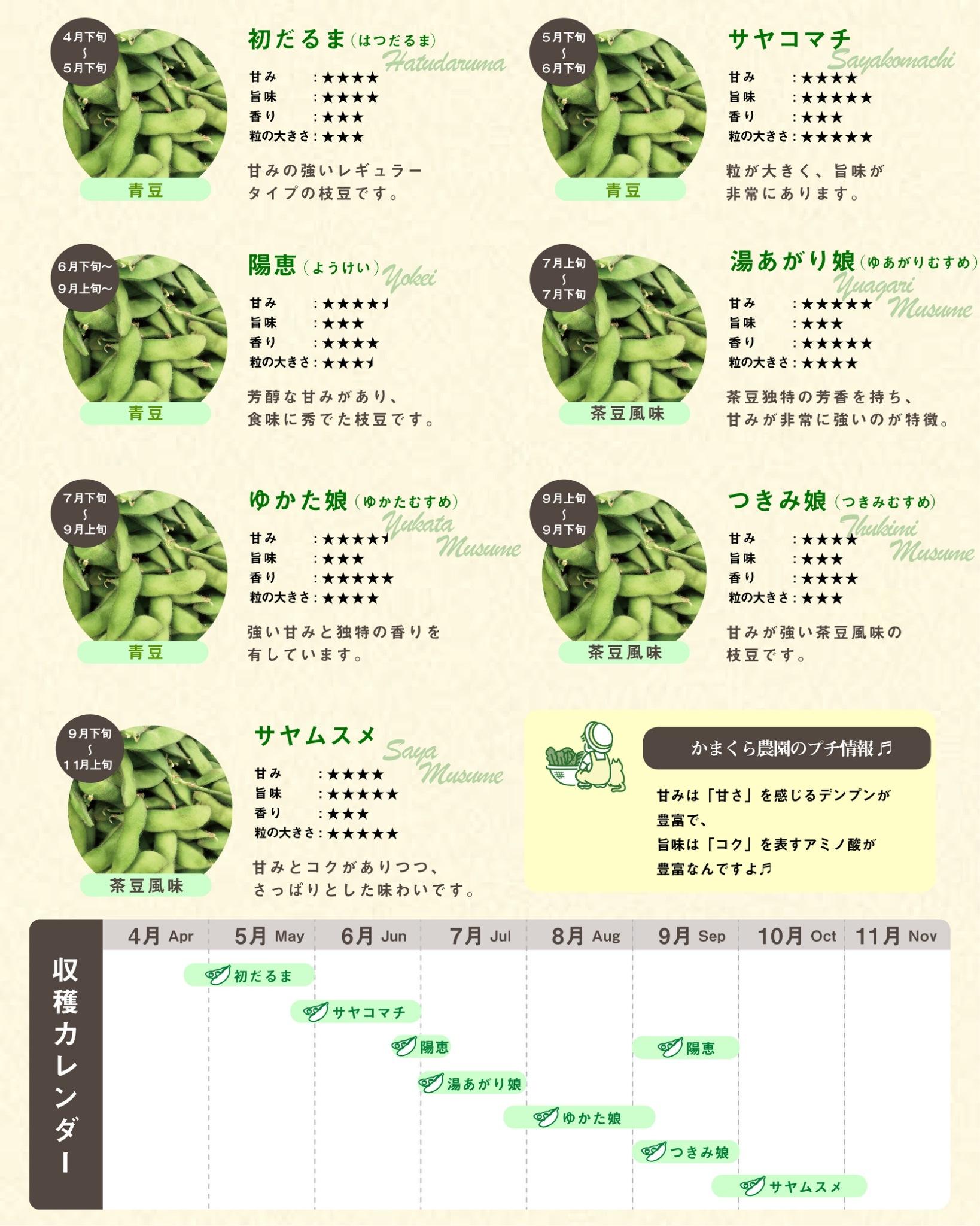 かまくら農園の枝豆品種一覧