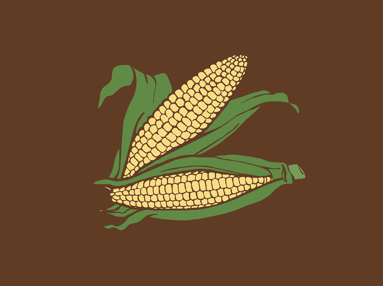 トウモロコシのきれいな食べ方・取り方を現役トウモロコシ農家が解説