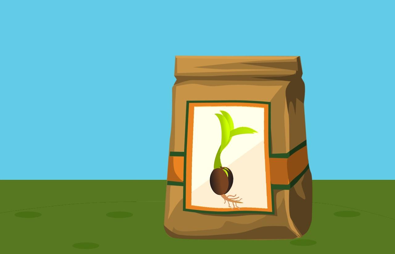 枝豆100gの栄養素