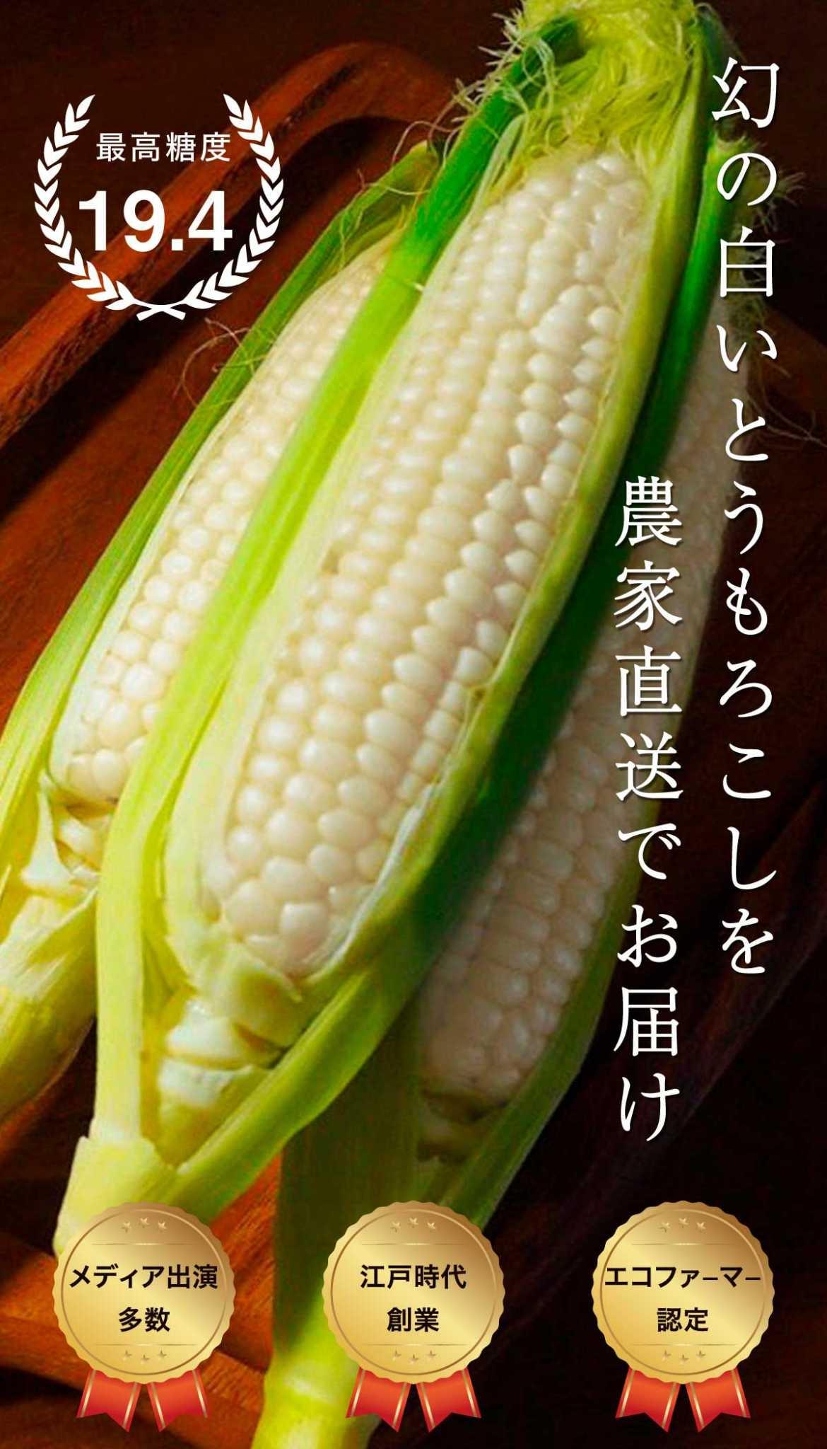 白い国産とうもろこし「ピュアホワイト」を千葉県から産直通販でお届け